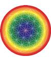 Energy Flower